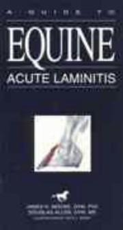 Cover of: A Guide to Equine Acute Laminitis | James N. Moore