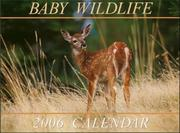 Cover of: Baby Wildlife 2006 Calendar