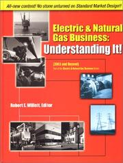Cover of: Electricity & Natural Gas Business | Robert E. Willett