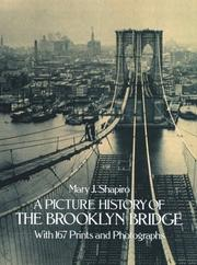 Cover of: A picture history of the Brooklyn Bridge