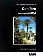 Cover of: Conifers
