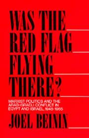Was the red flag flying there? by Joel Beinin