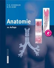 Cover of: Anatomie |