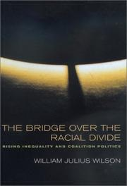 Cover of: The Bridge over the Racial Divide