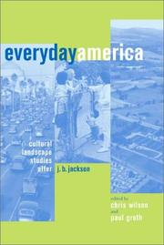 Cover of: Everyday America |