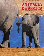 Cover of: Animales de Africa by Mauro Burzio