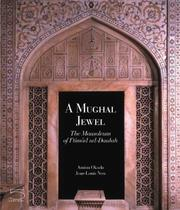 Cover of: A Mughal Jewel