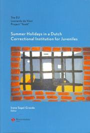 Cover of: Summer Holidays in a Dutch Correctional Inst for Juveniles | Irene Sagel-Grande