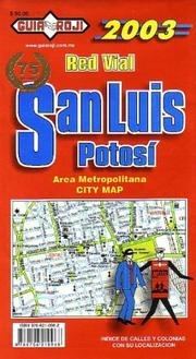 Cover of: San Luis Potosi City Plan