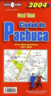 Cover of: Pachuca City Plan