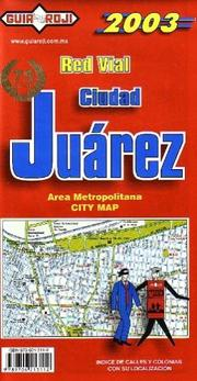Cover of: Juarez City Plan