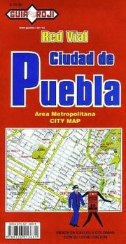 Cover of: Puebla City Plan