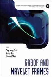 Cover of: Gabor And Wavelet Frames (Lecture Notes, Institute for Mathematical Sciences, National University of Singapore) (Lecture Notes, Institute for Mathematical Sciences, National University of Singapore) |
