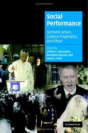 Cover of: Social performance |