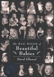 Cover of: The big book of beautiful babies | David Ellwand