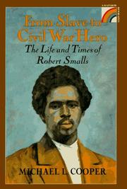 Cover of: From slave to Civil War hero