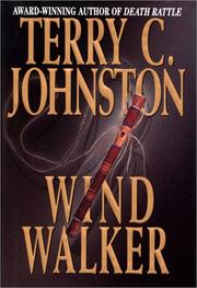 Cover of: Wind walker