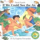Cover of: If we could see the air