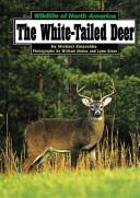 Cover of: The white-tailed deer