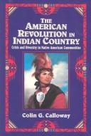 Cover of: The American revolution in Indian country