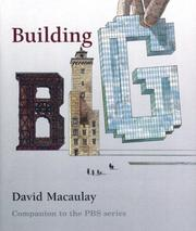 Cover of: Building Big