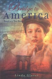 Cover of: Bridge To America: based on a true story