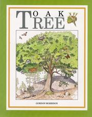 Cover of: Oak Tree