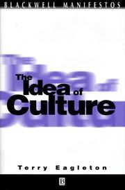 Cover of: The Idea of Culture