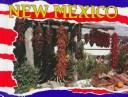 Cover of: New Mexico | Theresa S. Early