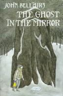 Cover of: The Ghost in the Mirror