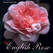 Cover of: The English rose