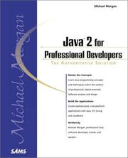 Cover of: Java 2 for Professional Developers (Professional)