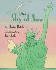Cover of: The sky of now