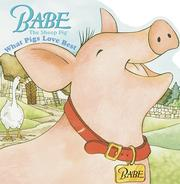Cover of: Babe | Dennis Hockerman
