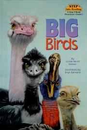 Cover of: Big birds | Lucille Recht Penner