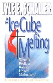 Cover of: The Ice Cube Is Melting: What Is Really at Risk in United Methodism