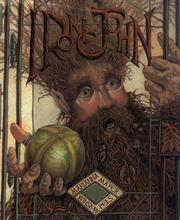 Cover of: Iron John