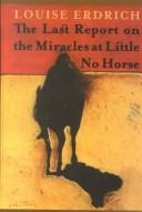 Cover of: The last report on the miracles at Little No Horse: A Novel