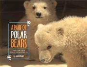 Cover of: A pair of polar bears