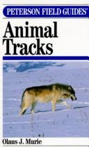 Cover of: A field guide to animal tracks