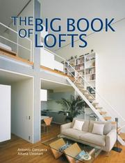 Cover of: The Big Book of Lofts (Big Book of) | Antonio Corcuera