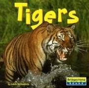 Cover of: Tigers | Adele Richardson