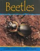 Beetles (Minibeasts)