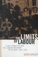 The Limits of Labour by David Bright