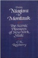 Cover of: From Niagara to Montauk