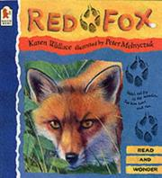 Cover of: Red Fox (Read & Wonder)