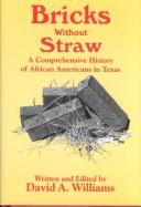 Cover of: Bricks Without Straw | David A. Williams