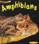 Cover of: Amphibians (Animal Babies) | Rod Theodorou