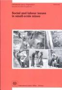 Cover of: Social and Labor Issues in Small Scale Mines
