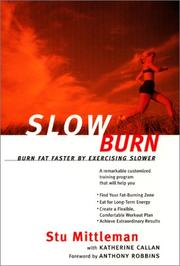 Cover of: Slow Burn | Stu Mittleman